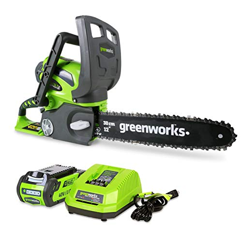 Greenworks 40V 12-Inch Cordless Chainsaw, 2.0Ah Battery and Charger Included 20262