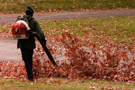 How to CleanUp Leaves in Large Yard